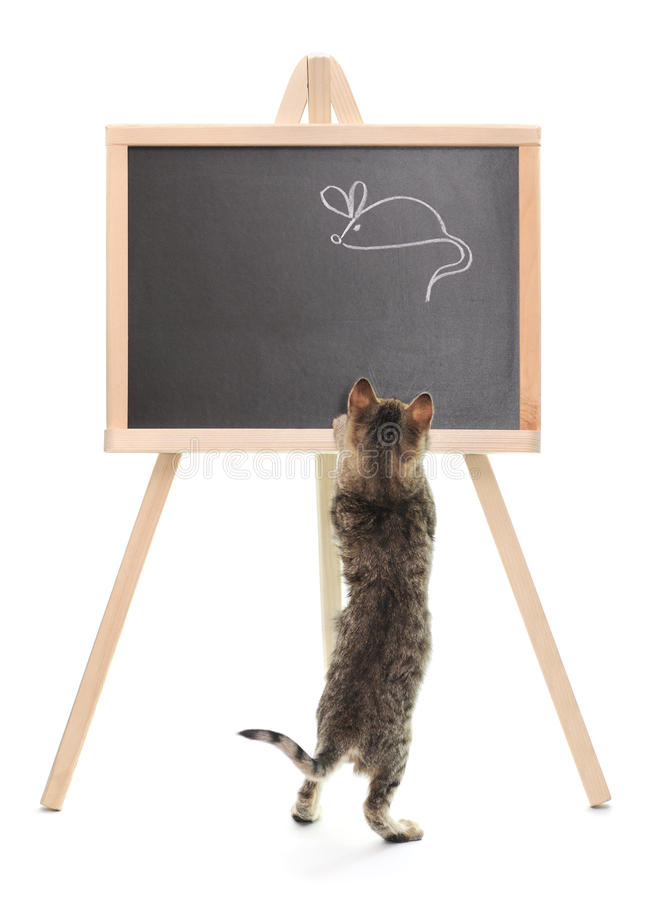 Kitten with blackboard. The kitten with a board with mouse drawing royalty free stock image