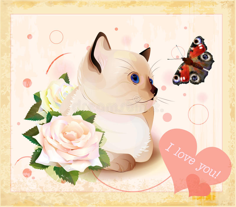 Download Kitten, Butterfly And Roses Stock Vector - Illustration of painting, flirting: 25685251