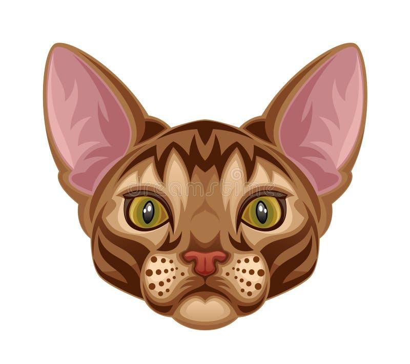 Download Kitten head stock vector. Illustration of front, stare - 27573569