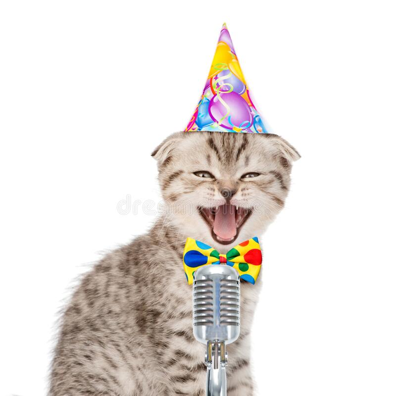 Free Kitten In Birthday Hat Singing With Microphone A Karaoke Song. Isolated On White Background Royalty Free Stock Photo - 184669955