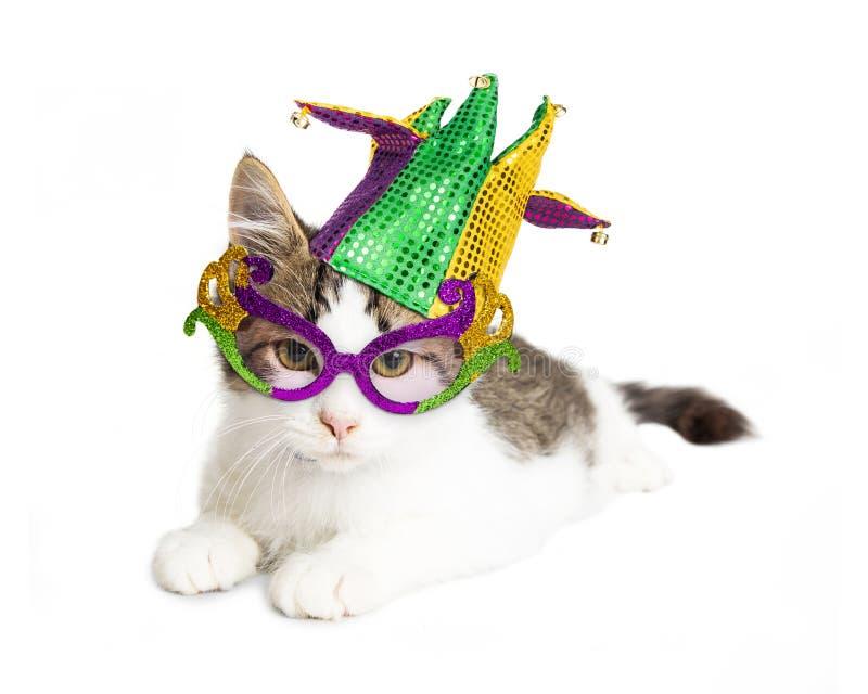 Kitten Wearing Mardi Gras Hat e vidros fotografia de stock royalty free