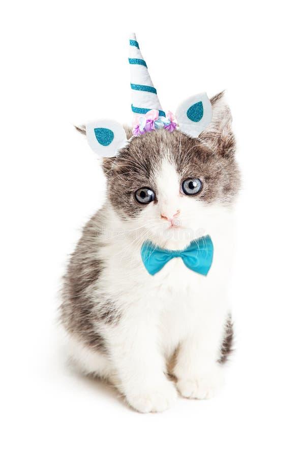 Kitten Wearing Unicorn Halloween Costume mignonne photographie stock libre de droits