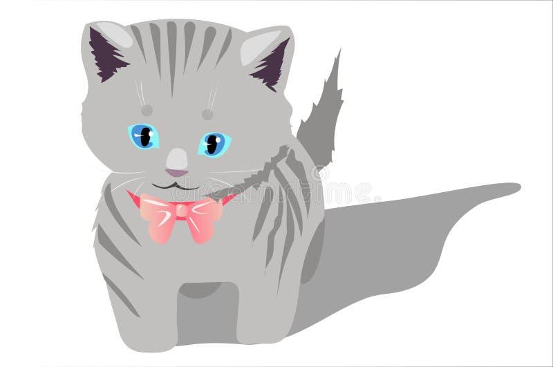 Kitty photo stock