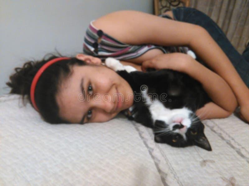 kitty lizenzfreies stockfoto