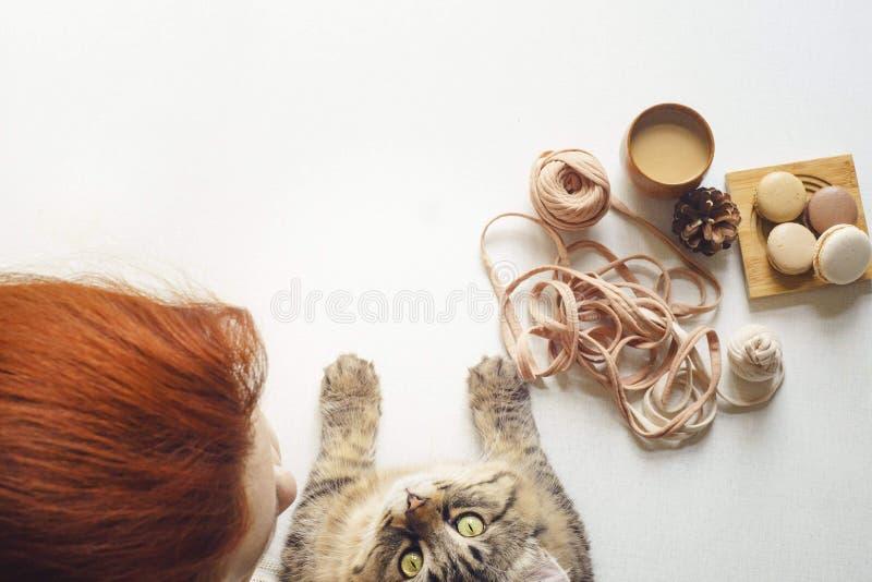 Kitty cerca la destra alla macchina fotografica ed alla giovane femmina fotografia stock