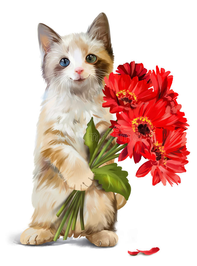Kitty Holding A Bouquet Of Red Flowers Stock Illustration ...