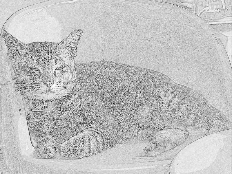 Kitty somnolent dans l'illustration illustration libre de droits