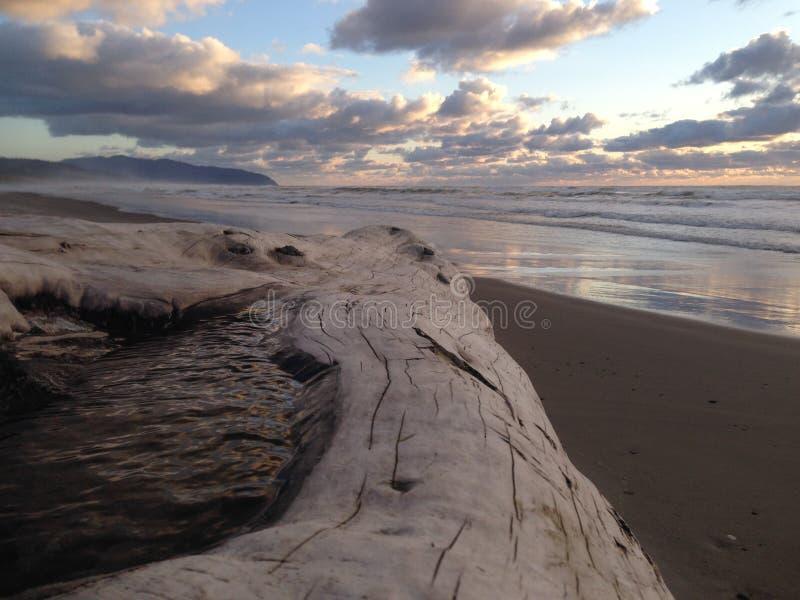 Kiwanda Oregon strand med journalen och ursnygg solnedgång royaltyfri foto