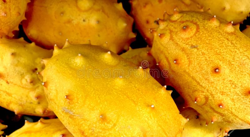Kiwano Melons or African Horned Melon, from New Zealand stock image
