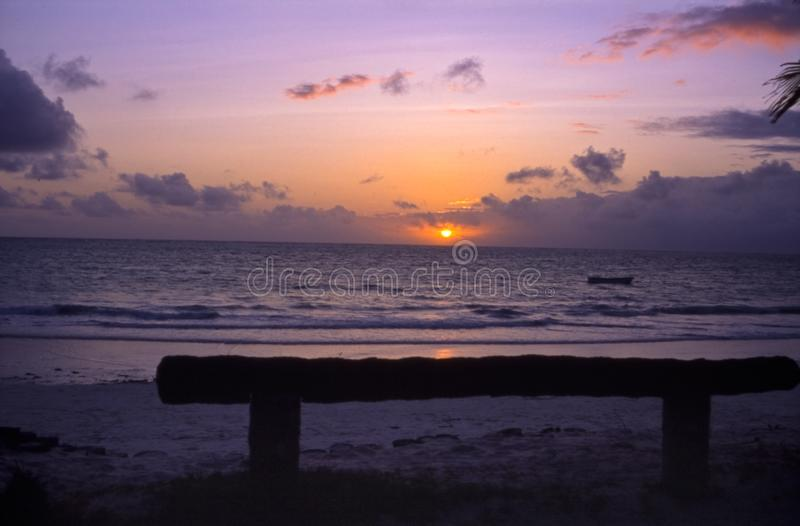 Kiwengwa beach in Zanzibar. Kiwengwa beachat the sunset, Zanzibar island, Tanzania, Africa royalty free stock photos