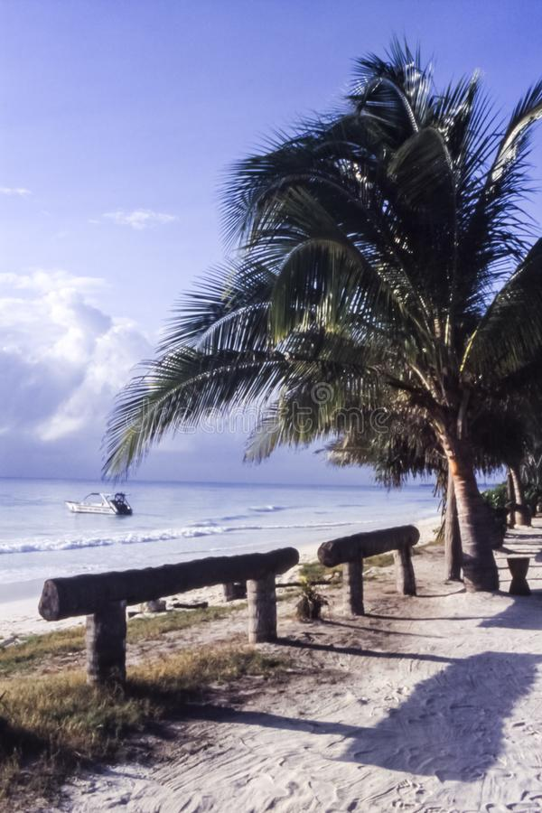 Kiwengwa beach in Zanzibar. One of the most famous beach in Zanzibar, Kiwengwa, Tanzania, Africa stock photography