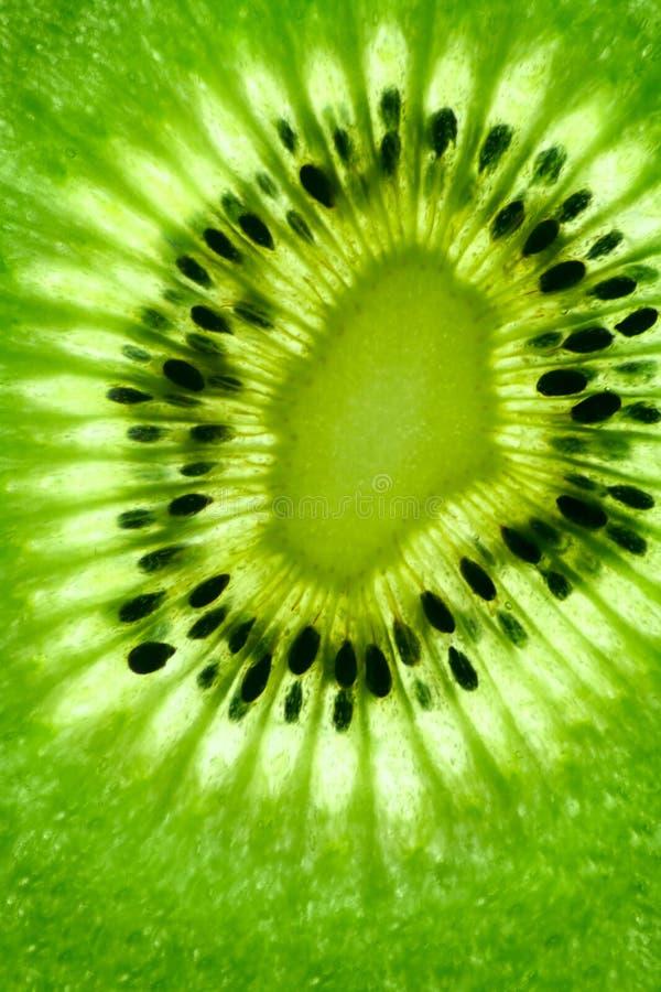 Free Kiwi Royalty Free Stock Image - 10365006