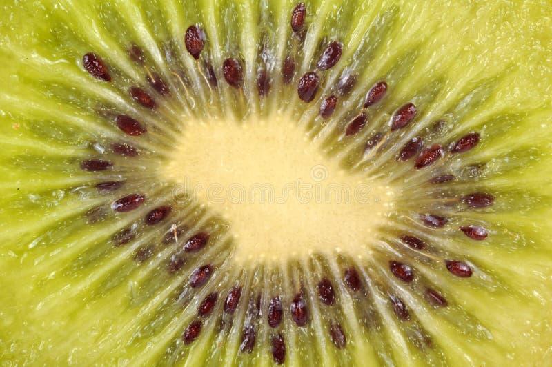 Download Kiwi stock photo. Image of juicy, delicious, healthy - 11190520
