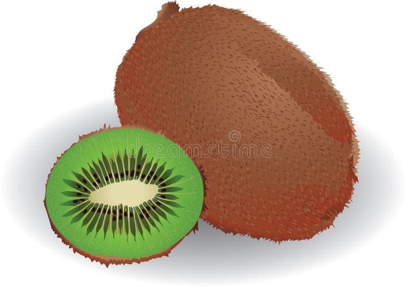 Kiwi stock abbildung