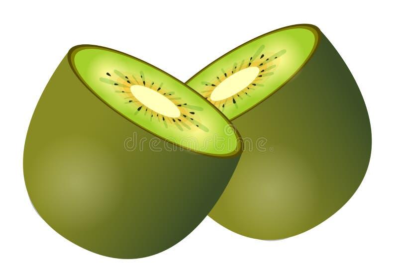 Download Kiwi stock illustration. Illustration of fruits, detail - 12313530