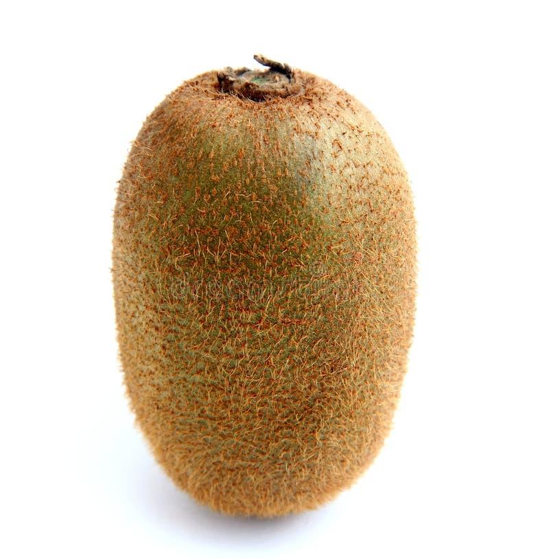 Download Kiwi stock image. Image of oblong, nobody, juicy, deliciosa - 21953757
