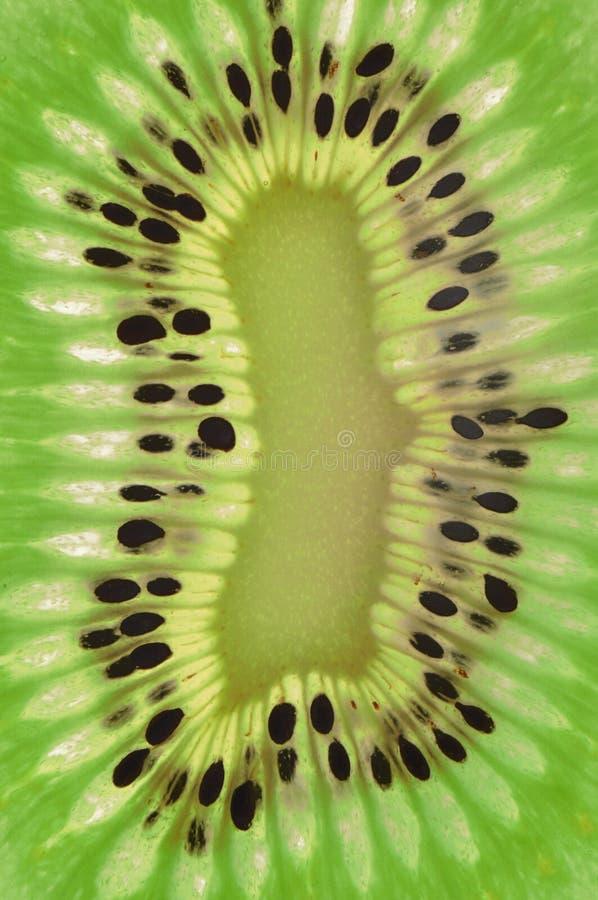 Download Kiwi stock photo. Image of multi, goodness, freshness - 26070648