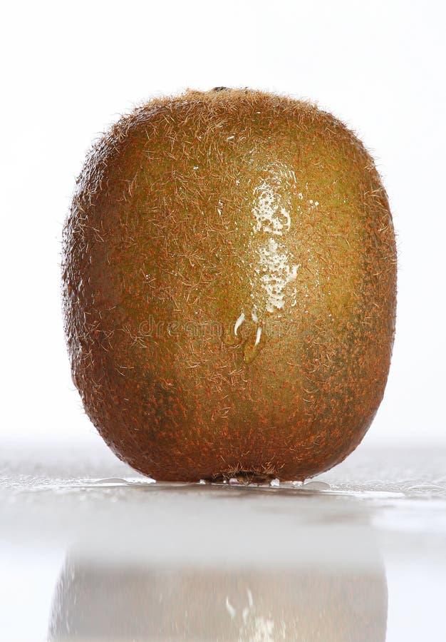 kiwi royaltyfri foto