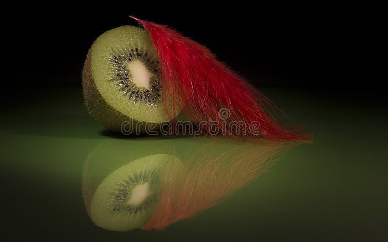 Kiwi zdjęcia royalty free