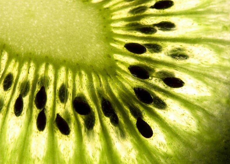 Kiwi stockfotografie