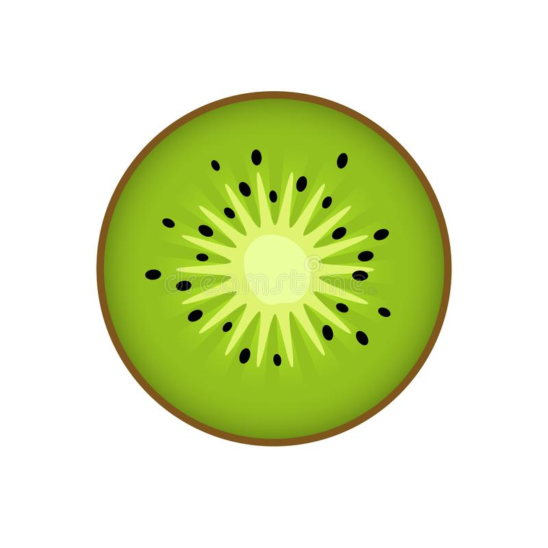 Kiwi, kiwi or Chinese gooseberry with half cross-section flat color icon isolated on white background for food applications and stock illustration