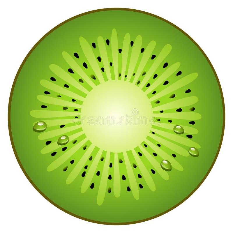 Kiwi de la fruta el en semi-círculo stock de ilustración
