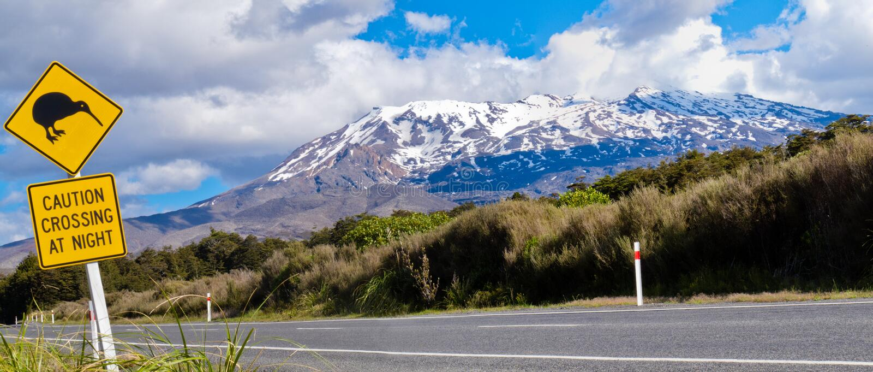 Kiwi die verkeersteken en vulkaan Ruapehu, NZ kruist stock foto