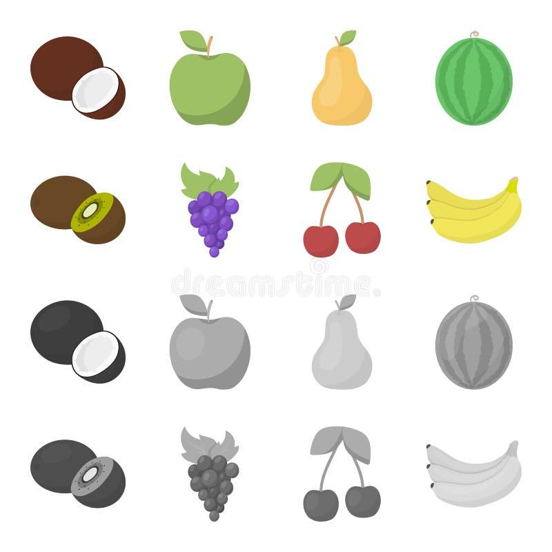 Kiwi, druiven, kers, banaan Vruchten geplaatst inzamelingspictogrammen in beeldverhaal, zwart-wit de voorraadillustratie van het  stock illustratie