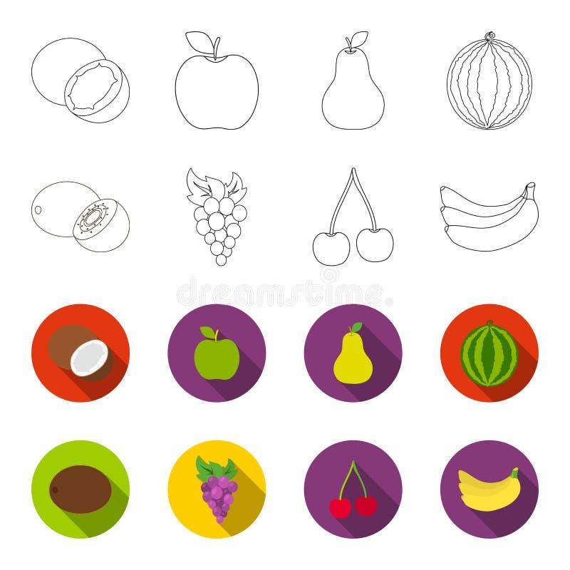 Kiwi, druiven, kers, banaan Vruchten geplaatst inzamelingspictogrammen in overzicht, flet Web van de de voorraadillustratie van h stock illustratie