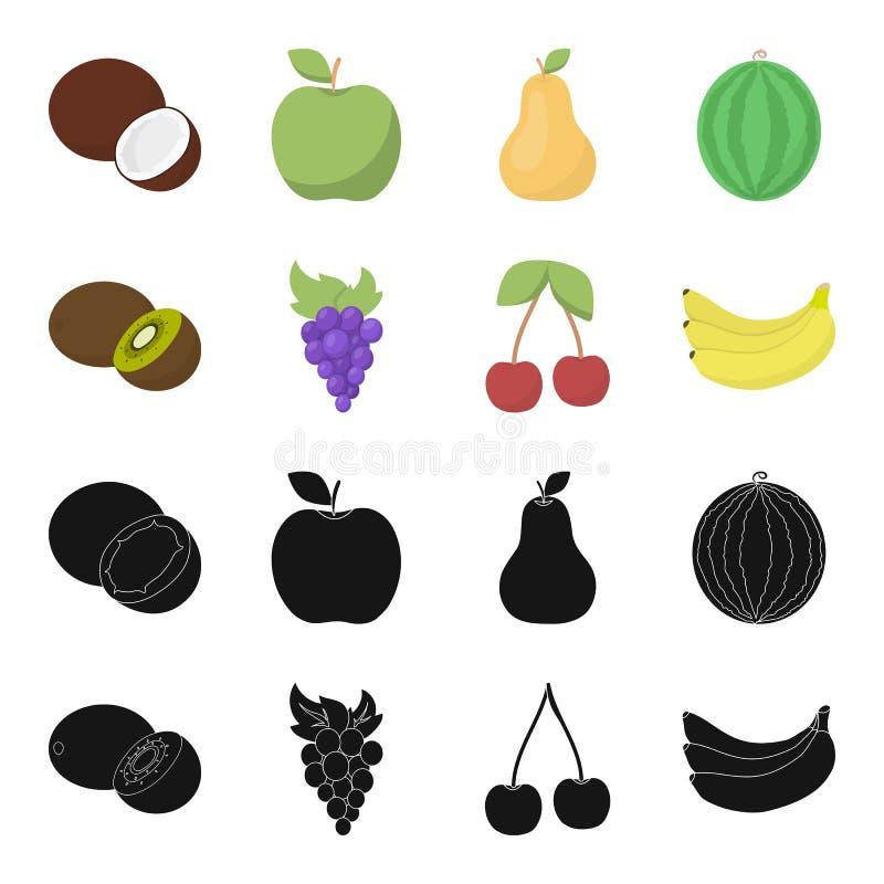 Kiwi, druiven, kers, banaan Vruchten geplaatst inzamelingspictogrammen in zwarte, van de het symboolvoorraad van de beeldverhaals stock illustratie