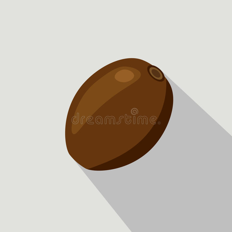 Kiwi Flat Icon lizenzfreie abbildung