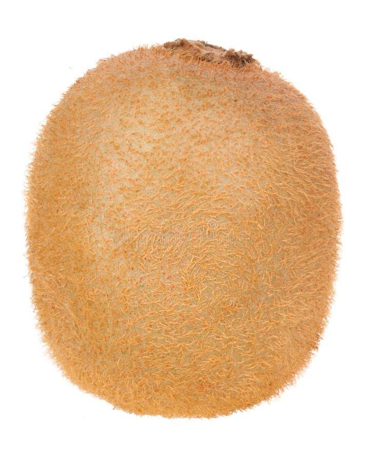 Kiwi-Frucht stockbilder
