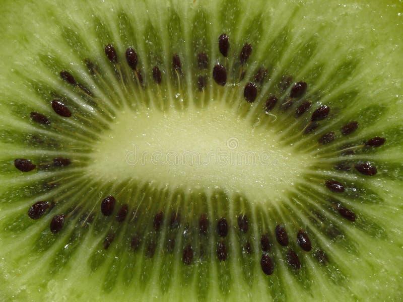 Download Kiwi fruit stock image. Image of slices, fresh, good - 13477127