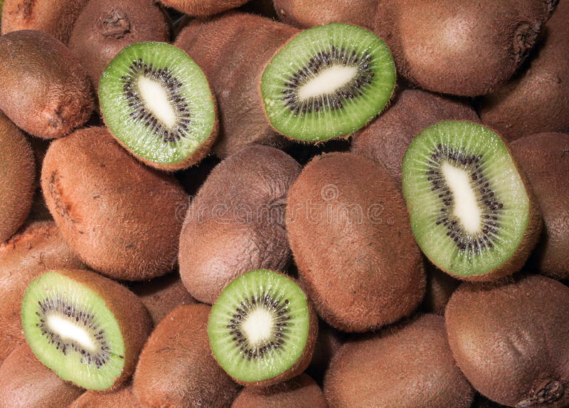 Download Kiwi Fruit stock image. Image of fruit, freshest, freshness - 28119935