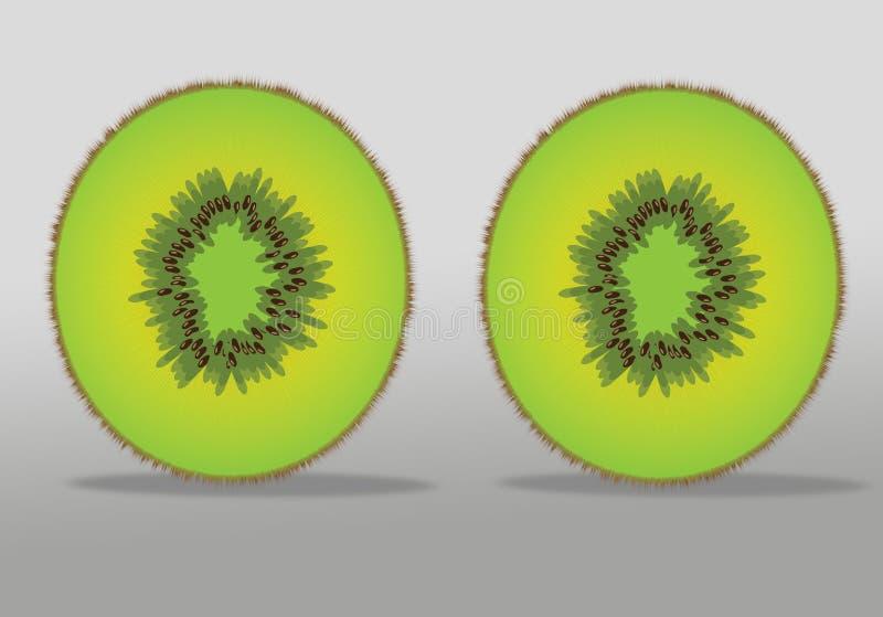 Kiwi Fruit photos libres de droits