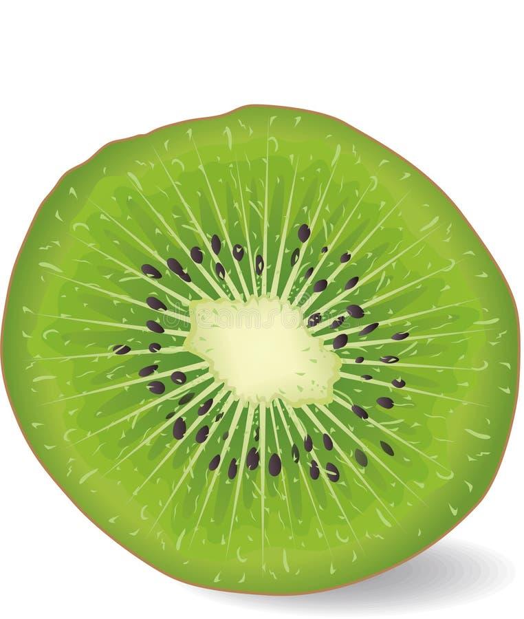 Free Kiwi Fruit Stock Photos - 8286783