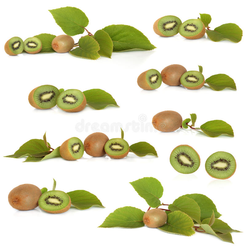 Download Kiwi Fruit Collection Royalty Free Stock Photos - Image: 14171158