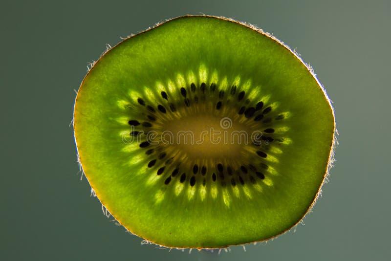 Kiwi Fruit Levitation fotografia de stock royalty free