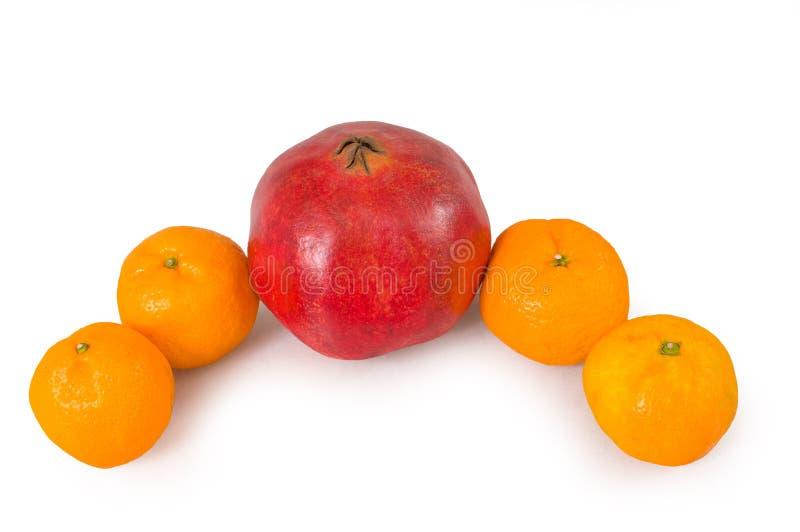 kiwi granatowa tangerines obrazy royalty free