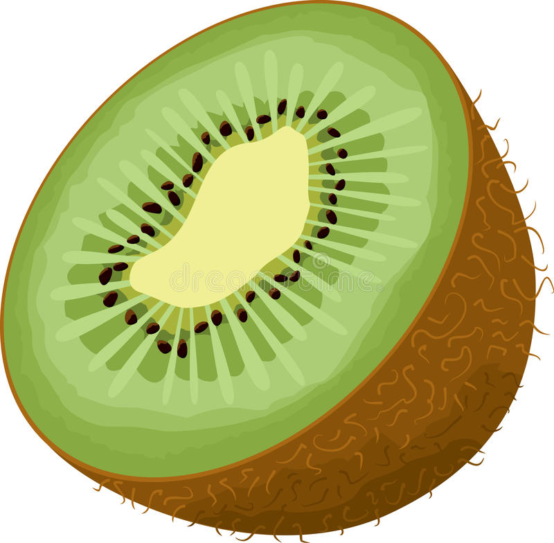 Kiwi icon royalty free illustration
