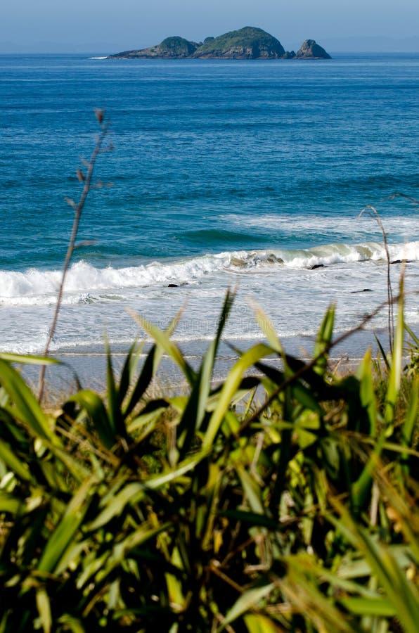 Kiwi Island from Henderson bay stock photos