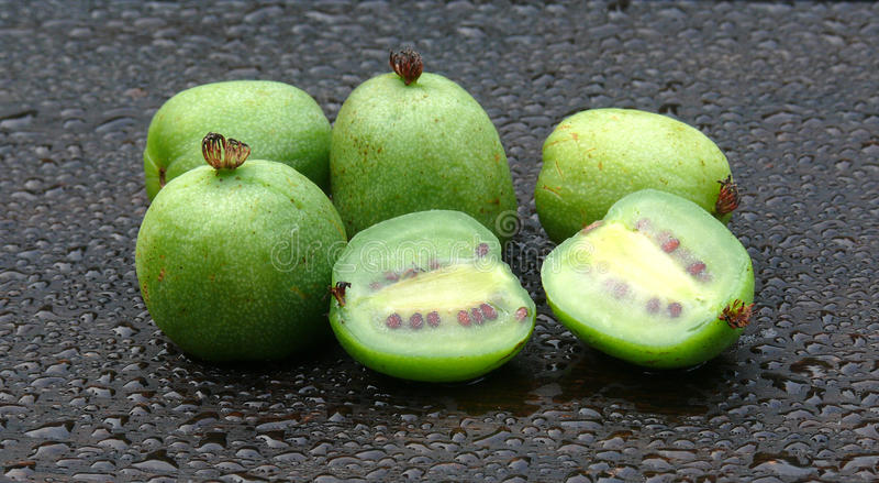 Kiwi jagody fotografia royalty free