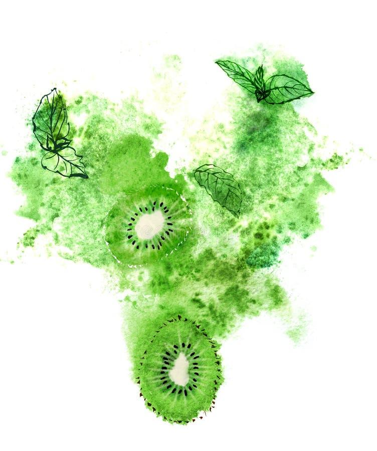 Kiwi juteux, menthe fraîche et éclaboussure verte sur le fond blanc Illustration peinte à la main d'aquarelle illustration stock