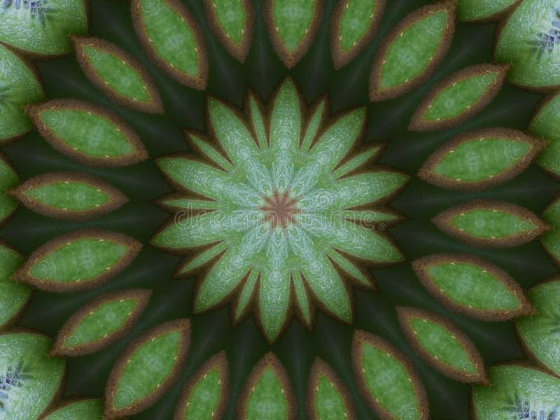 Kiwi kaleidoscope royalty free stock image