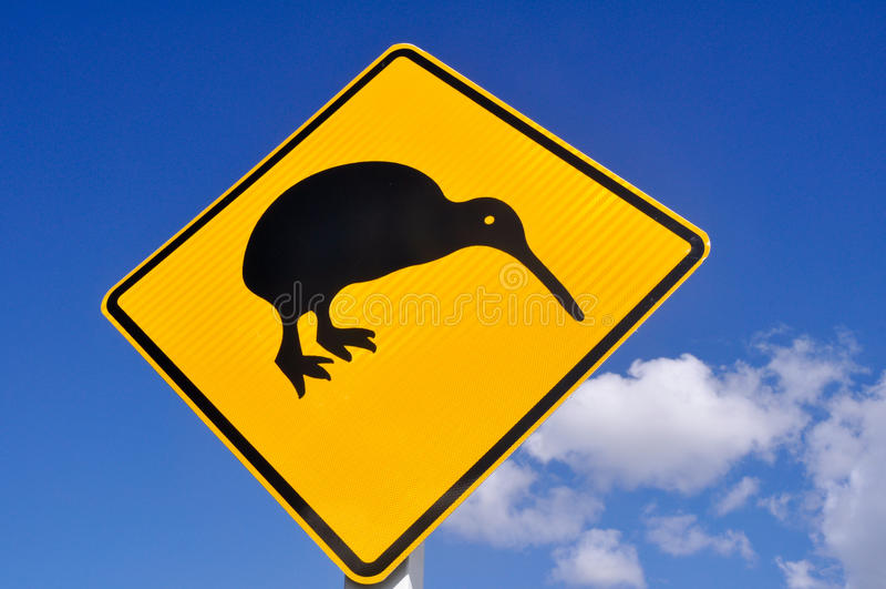 Kiwi op de weg stock afbeeldingen