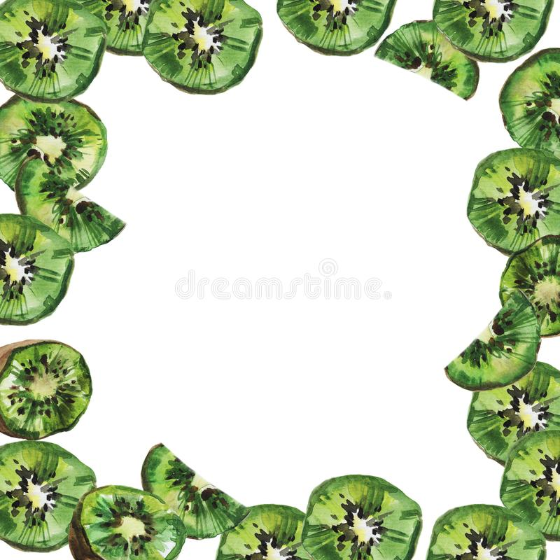 Kiwi owoc rama Na bia?y tle akwareli ilustracja ilustracji