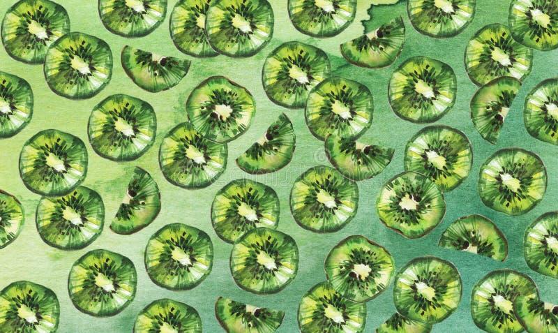 Kiwi owoc t?o Akwareli ilustracja na zielonym tle royalty ilustracja