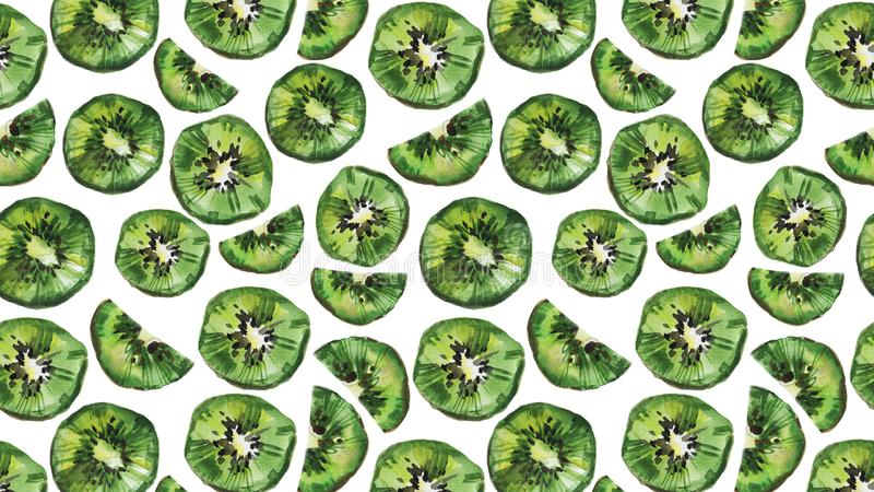 Kiwi owoc t?o Na bia?y tle akwareli ilustracja ilustracja wektor