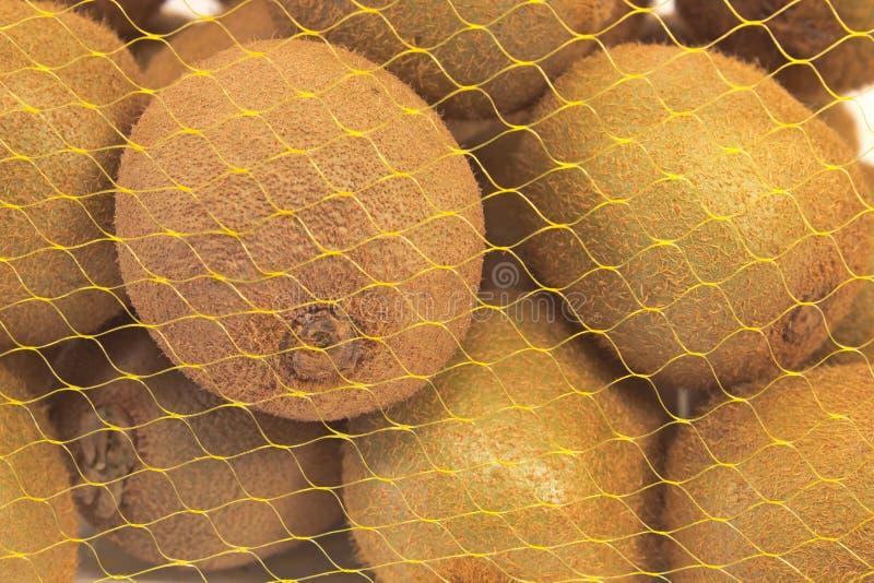 Kiwi owoc w klingeryt sieci paczce zdjęcie royalty free