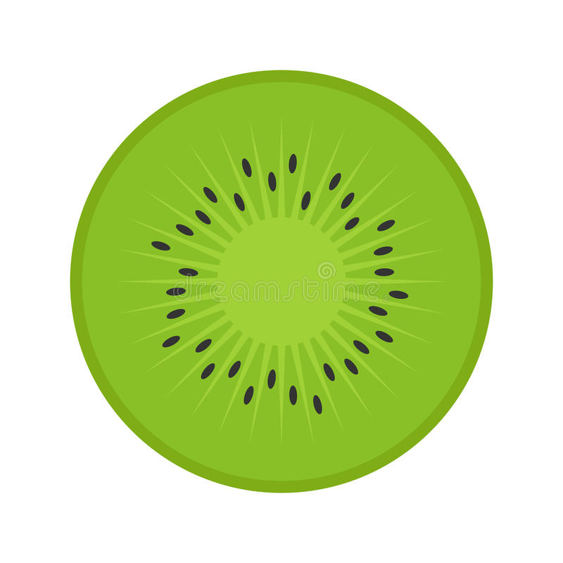Kiwi piano dell'icona illustrazione di stock